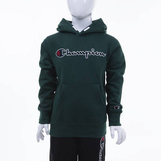 Champion Hooded Sweatshirt 305376 GS502