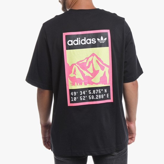 adidas Originals Graphic Tee FR0589